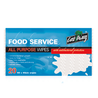 Castaway Antibacterial Wipes 60x45cm Pack of 20 White